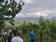 ...und danach in das Weinmuseum vom Lieselehof...